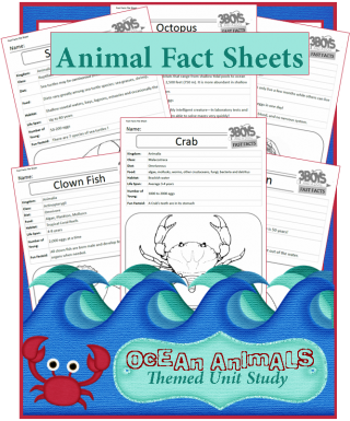 how to set out a fact sheet
